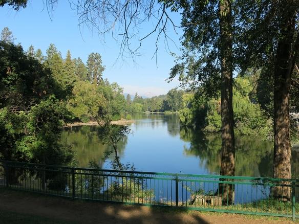 IMG_7795_1000_Town_Lake