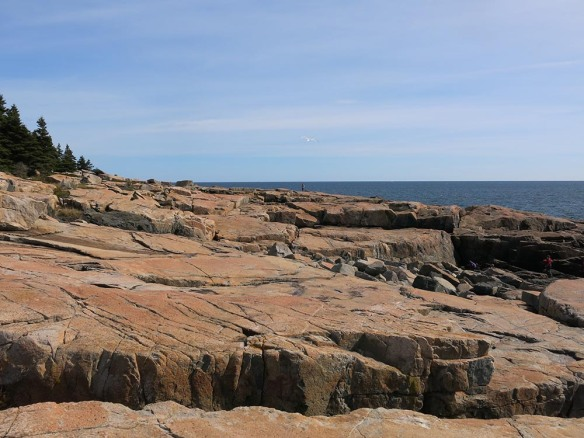 2_AcadiaE_0428_1000
