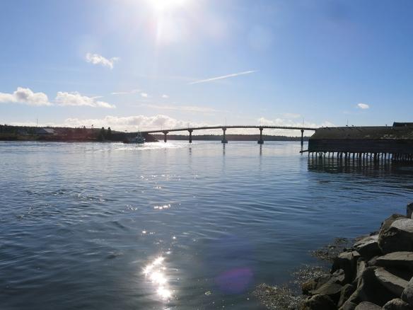 Campo_0346_1000_Bridge