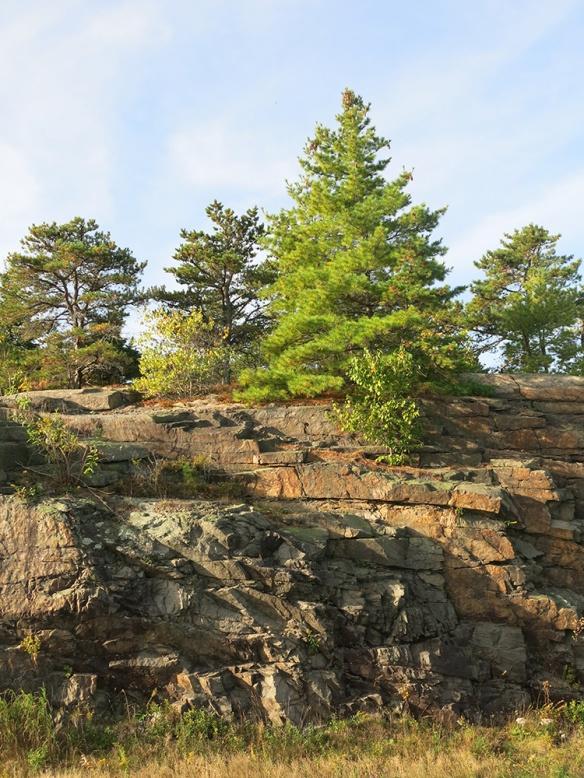3_Acadia_0484_1000